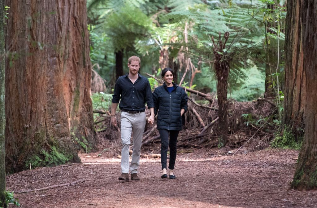 Prince Harry and Meghan Markle Wanted To Move To New Zealand